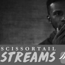 Scissortail Streams