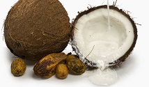New Report Confirms That Coconut Oil Is Alarmingly High In Saturated Fat