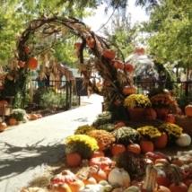 Myriad Garden's Pumpkinville
