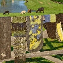 Shepherding-Lamb Tours & Shepherd's Garden Tours