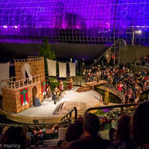 Oklahoma Shakespeare in the Park presents: The Book of Will